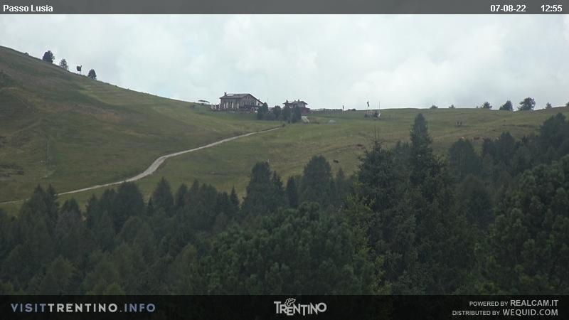 Webcam Moena - Lusia - Dolomitica slope - Altitude: 1,550 metresArea: CastelirPanoramic viewpoint: the slopes on side of Castelir-Bellamonte are easy, wide and sunny, ideal for beginners and families. Ski slope nursery, kindergarten on snow, tobbogan run, snowpark and boardercross. A groomed trail leads from the ...